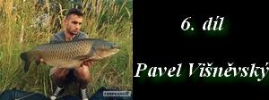 pankynaweb