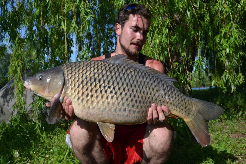 Luboš 81cm 9,5kg